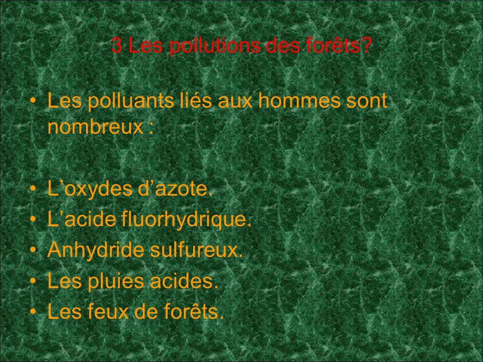 3 Les pollutions des forêts.Les polluants liés aux hommes sont nombreux : Loxydes dazote.