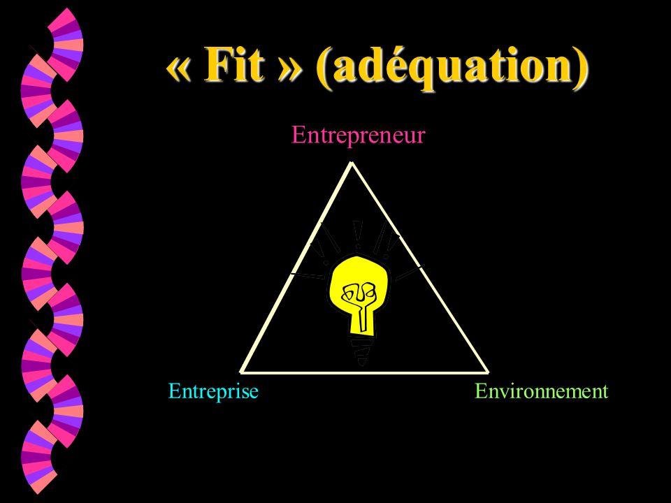 « Fit » (adéquation) Entrepreneur EntrepriseEnvironnement