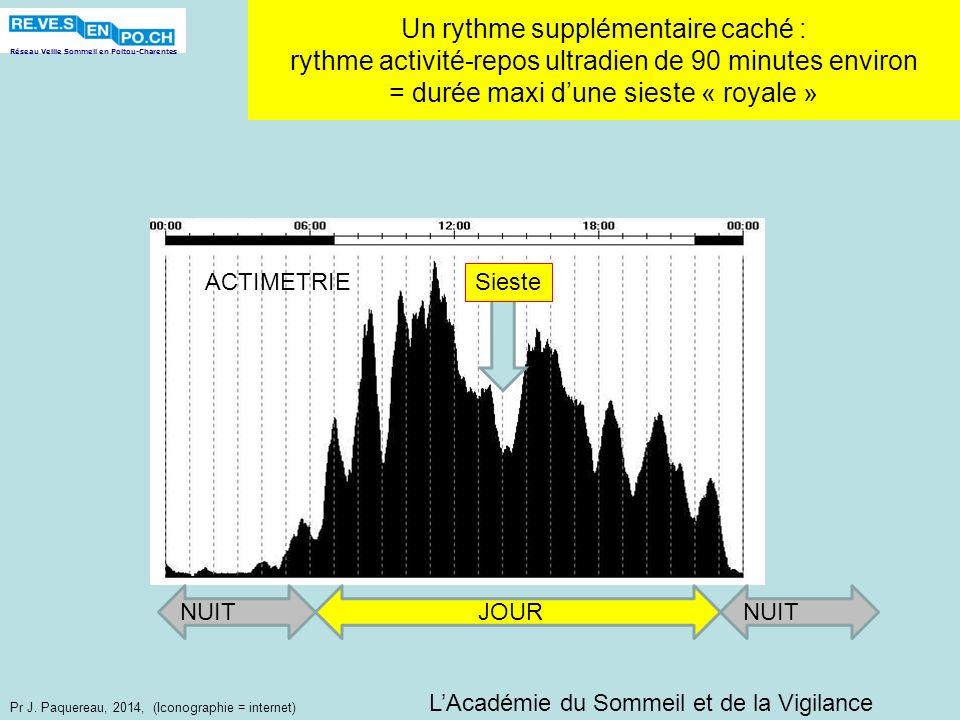 Réseau Veille Sommeil en Poitou-Charentes Pr J. Paquereau, 2014, (Iconographie = internet) Un rythme supplémentaire caché : rythme activité-repos ultr
