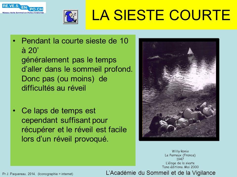 Réseau Veille Sommeil en Poitou-Charentes Pr J. Paquereau, 2014, (Iconographie = internet) LA SIESTE COURTE Pendant la courte sieste de 10 à 20 généra