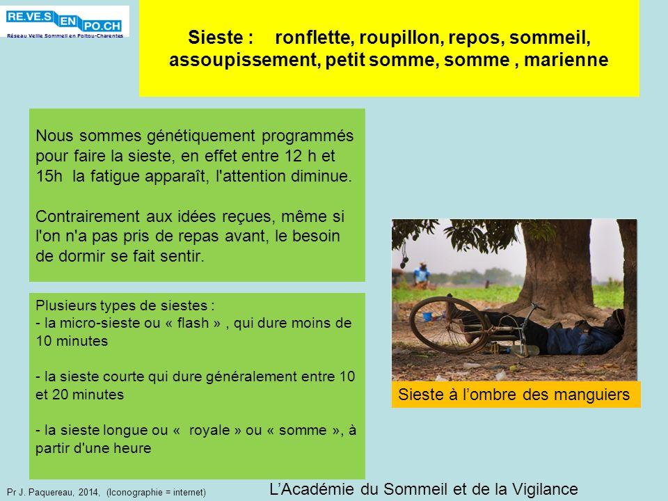 Réseau Veille Sommeil en Poitou-Charentes Pr J. Paquereau, 2014, (Iconographie = internet) Nous sommes génétiquement programmés pour faire la sieste,