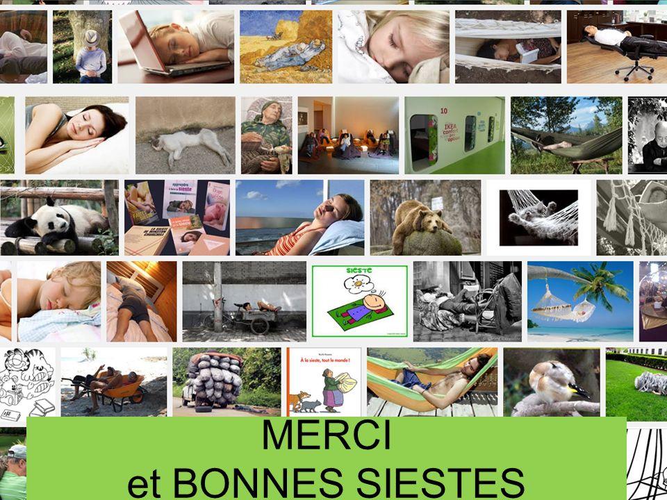 Réseau Veille Sommeil en Poitou-Charentes Pr J. Paquereau, 2014, (Iconographie = internet) LAcadémie du Sommeil et de la Vigilance MERCI et BONNES SIE