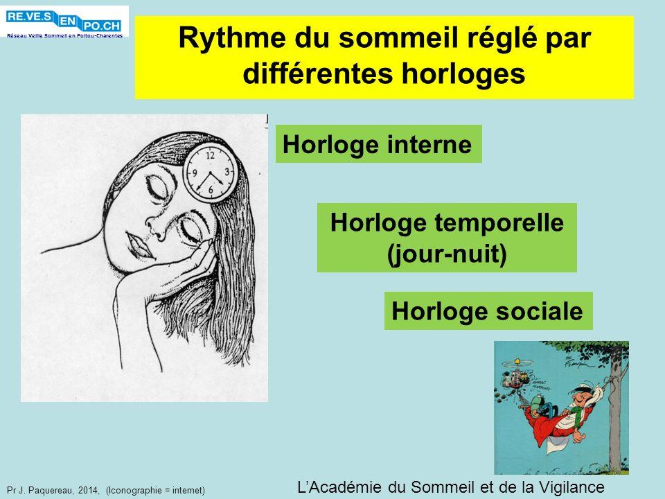 Réseau Veille Sommeil en Poitou-Charentes Pr J. Paquereau, 2014, (Iconographie = internet) Horloge interne Horloge temporelle (jour-nuit) Horloge soci
