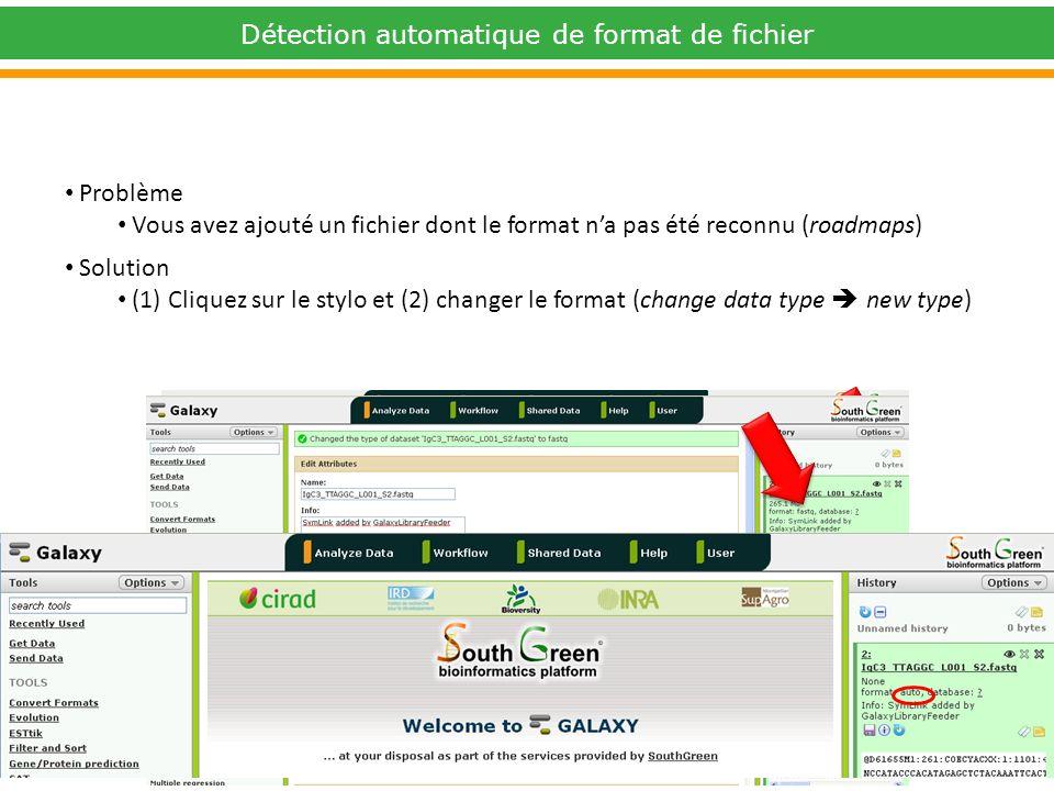 Problème Vous avez ajouté un fichier dont le format na pas été reconnu (roadmaps) Solution (1) Cliquez sur le stylo et (2) changer le format (change data type new type) 2 2 1 1 Détection automatique de format de fichier
