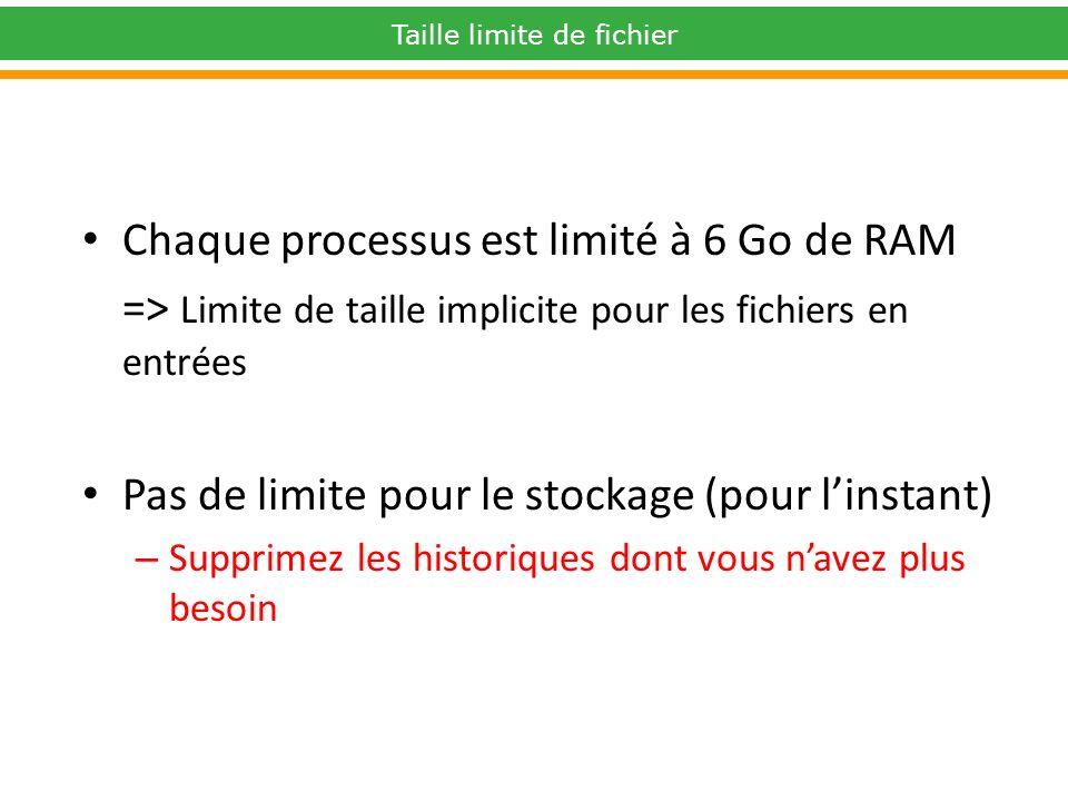 Taille limite de fichier Chaque processus est limité à 6 Go de RAM => Limite de taille implicite pour les fichiers en entrées Pas de limite pour le stockage (pour linstant) – Supprimez les historiques dont vous navez plus besoin