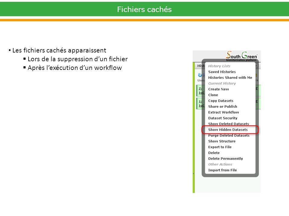 Fichiers cachés Les fichiers cachés apparaissent Lors de la suppression dun fichier Après lexécution dun workflow