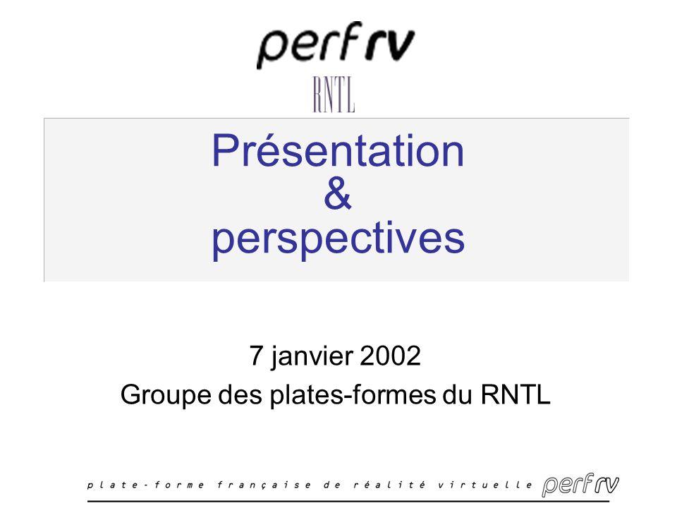 Présentation & perspectives 7 janvier 2002 Groupe des plates-formes du RNTL