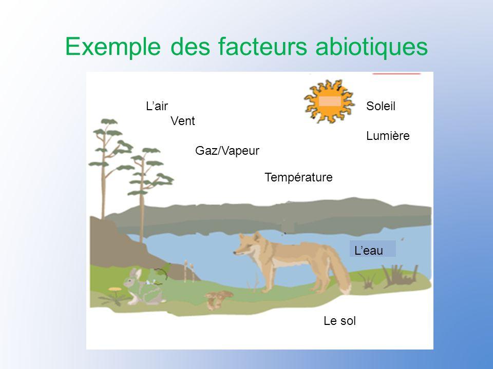 Comment les éléments abiotique influencent leur environnement La température et la lumière: La lumière du soleil donne de la chaleur aux animaux et aux plantes.