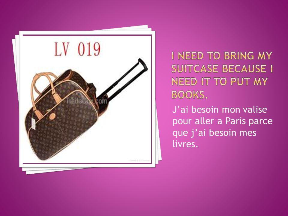 Jai besoin mon valise pour aller a Paris parce que jai besoin mes livres.