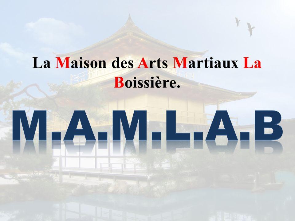 La Maison des Arts Martiaux La Boissière.
