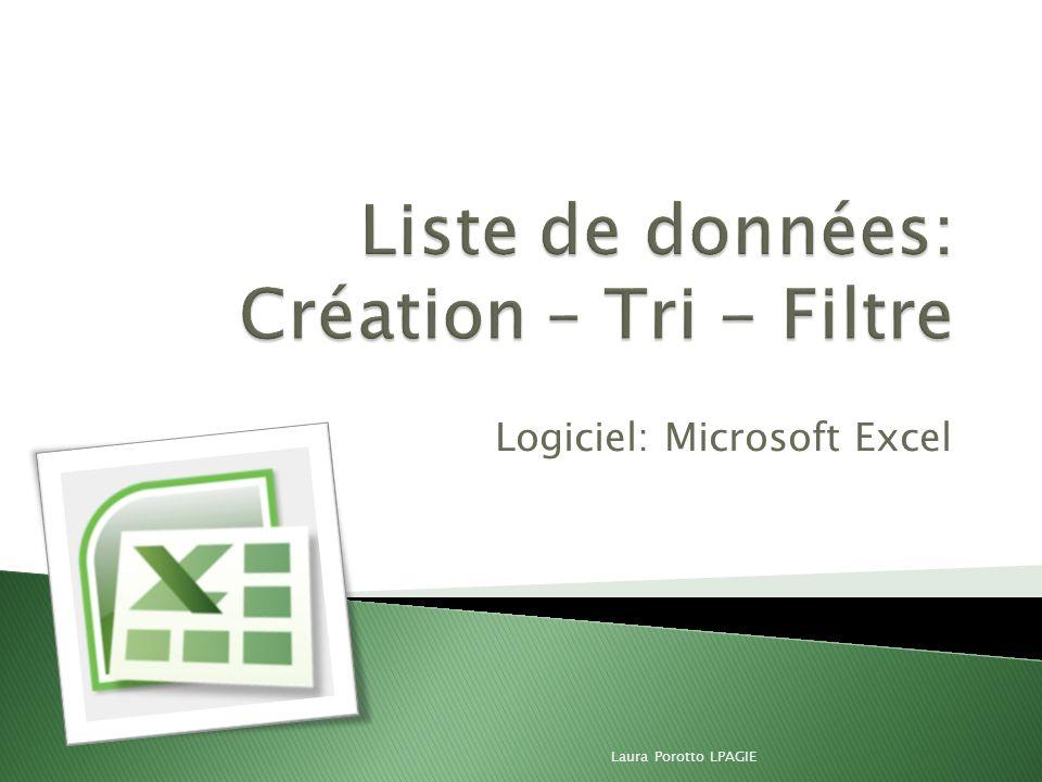 Logiciel: Microsoft Excel Laura Porotto LPAGIE