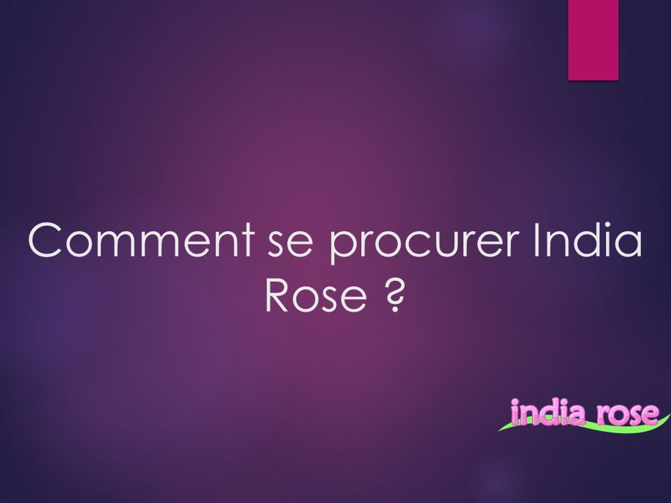 Comment se procurer India Rose