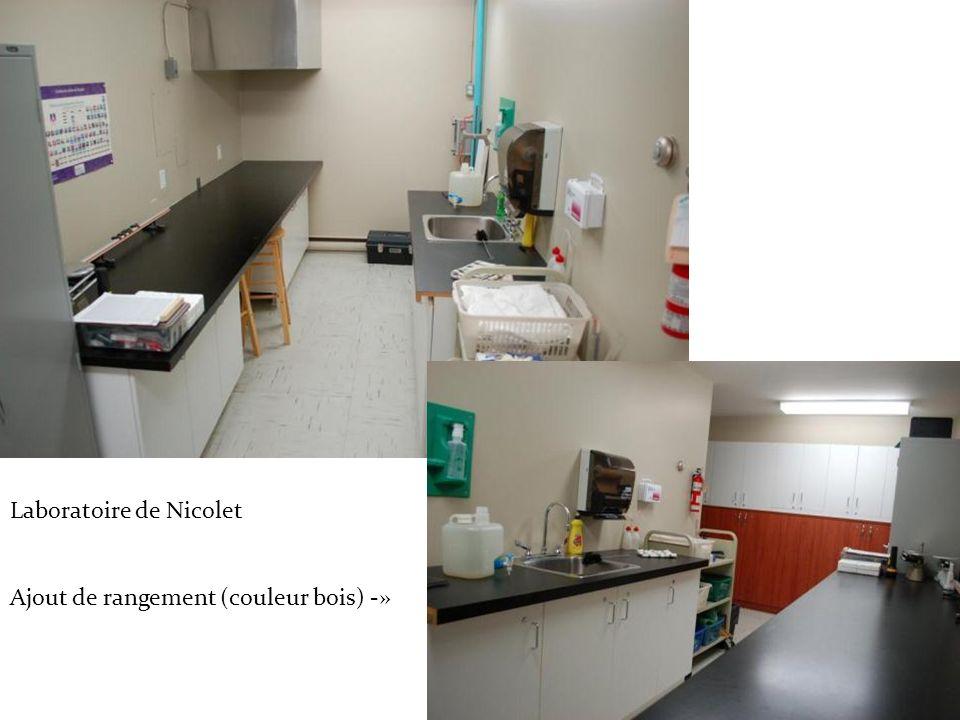 Laboratoire de Nicolet Ajout de rangement (couleur bois) -»