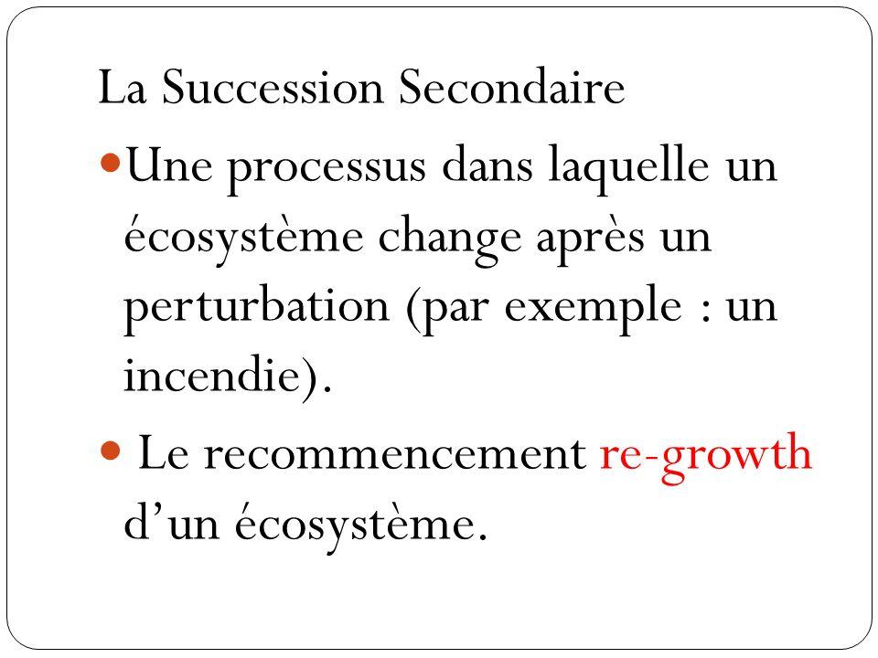 La Succession Secondaire Une processus dans laquelle un écosystème change après un perturbation (par exemple : un incendie). Le recommencement re-grow