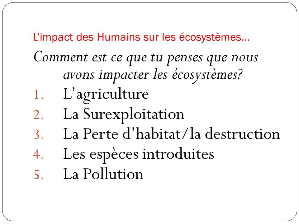 Limpact des Humains sur les écosystèmes... Comment est ce que tu penses que nous avons impacter les écosystèmes? 1. Lagriculture 2. La Surexploitation