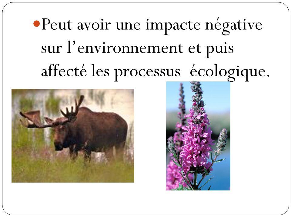 Peut avoir une impacte négative sur lenvironnement et puis affecté les processus écologique.