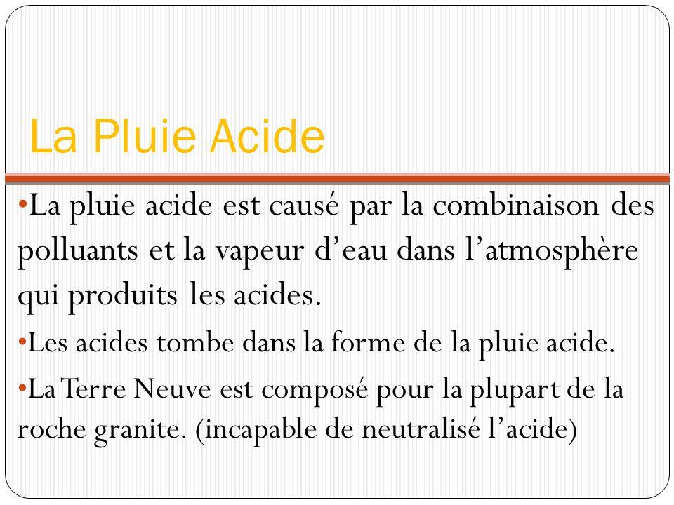 La Pluie Acide La pluie acide est causé par la combinaison des polluants et la vapeur deau dans latmosphère qui produits les acides. Les acides tombe