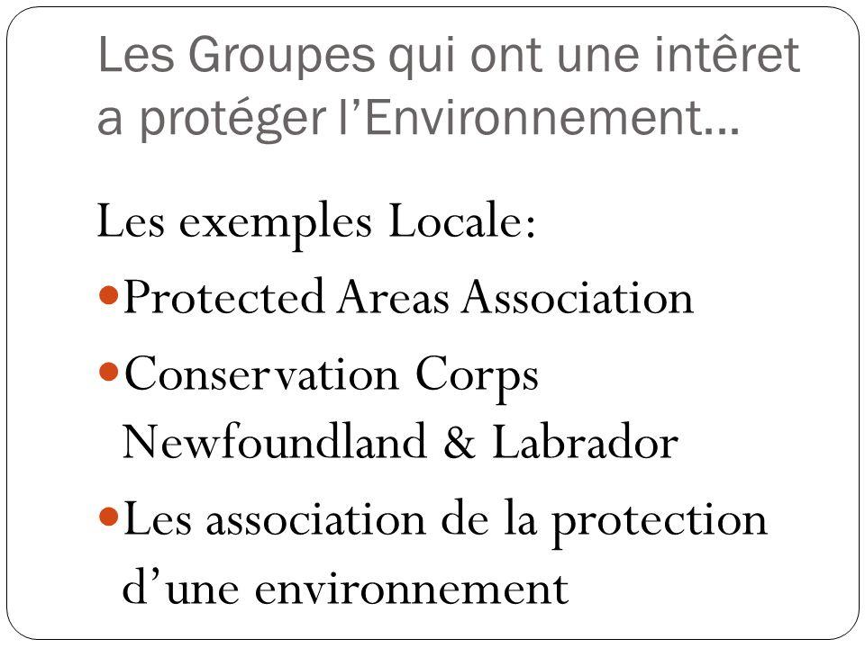 Les Groupes qui ont une intêret a protéger lEnvironnement... Les exemples Locale: Protected Areas Association Conservation Corps Newfoundland & Labrad