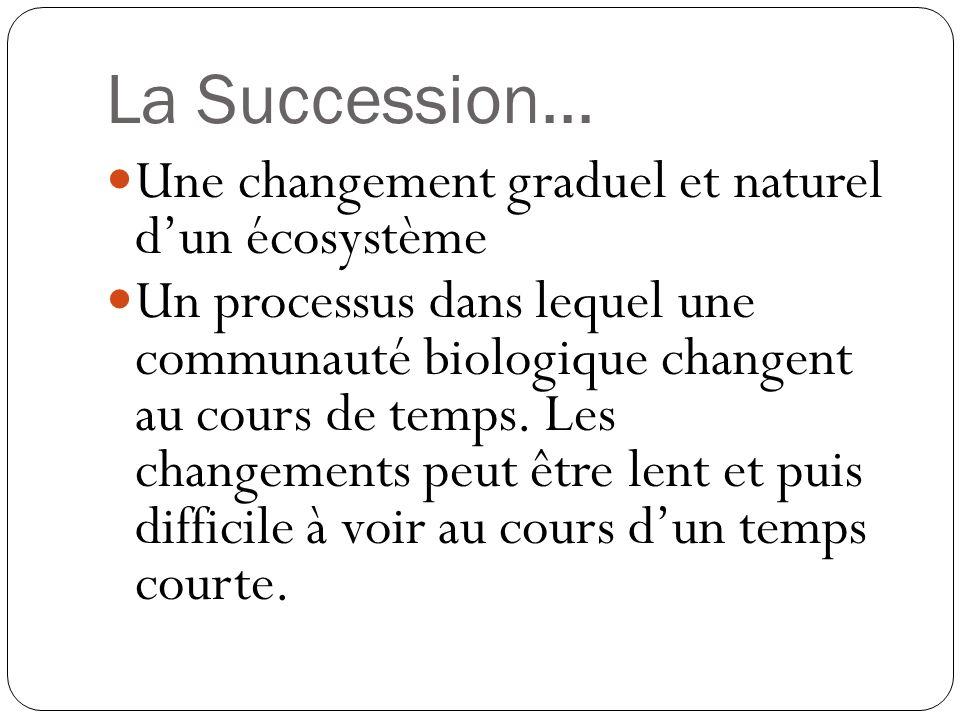 La Succession... Une changement graduel et naturel dun écosystème Un processus dans lequel une communauté biologique changent au cours de temps. Les c