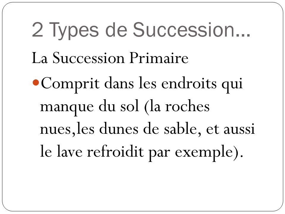 2 Types de Succession... La Succession Primaire Comprit dans les endroits qui manque du sol (la roches nues,les dunes de sable, et aussi le lave refro