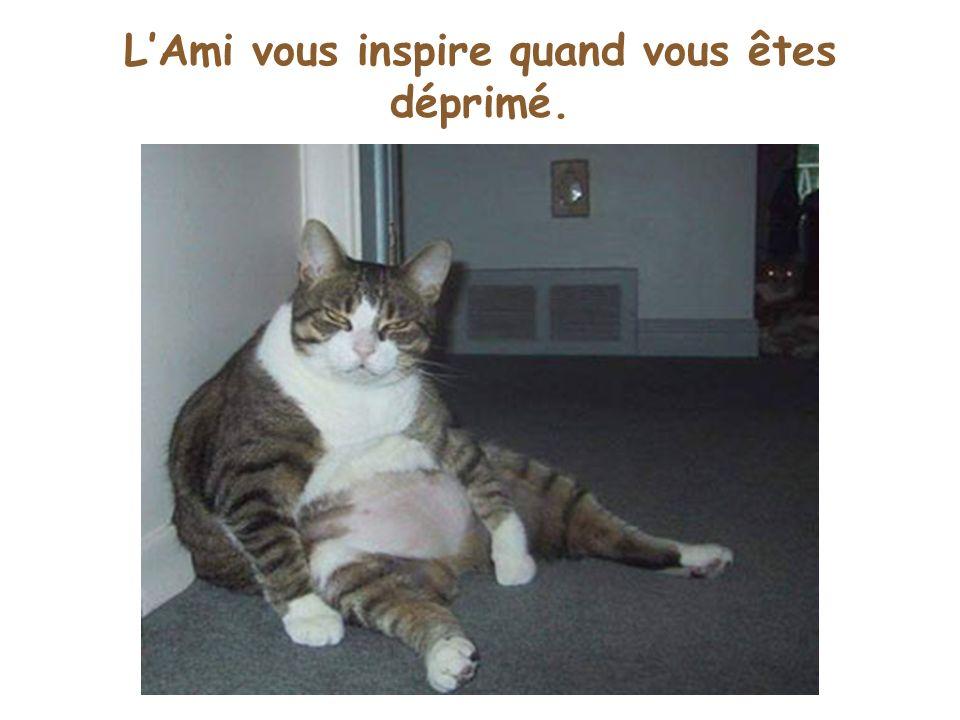 LAmi vous inspire quand vous êtes déprimé.