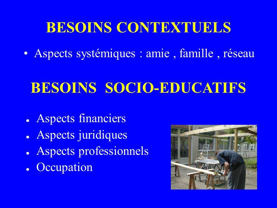 BESOINS CONTEXTUELS Aspects systémiques : amie, famille, réseau BESOINS SOCIO-EDUCATIFS Aspects financiers Aspects juridiques Aspects professionnels Occupation