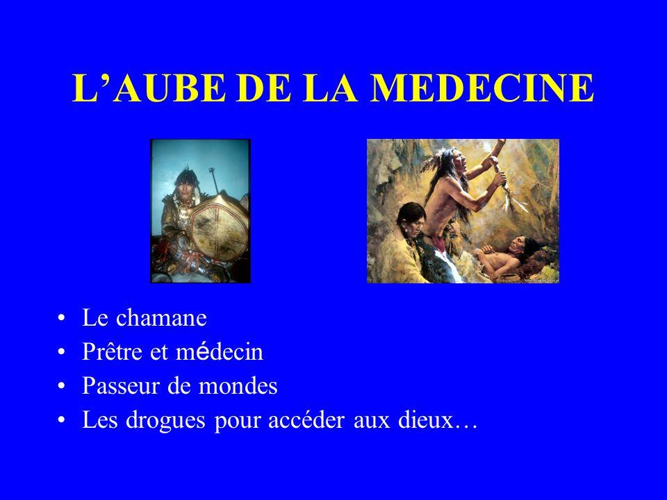 LAUBE DE LA MEDECINE Le chamane Prêtre et m é decin Passeur de mondes Les drogues pour accéder aux dieux…