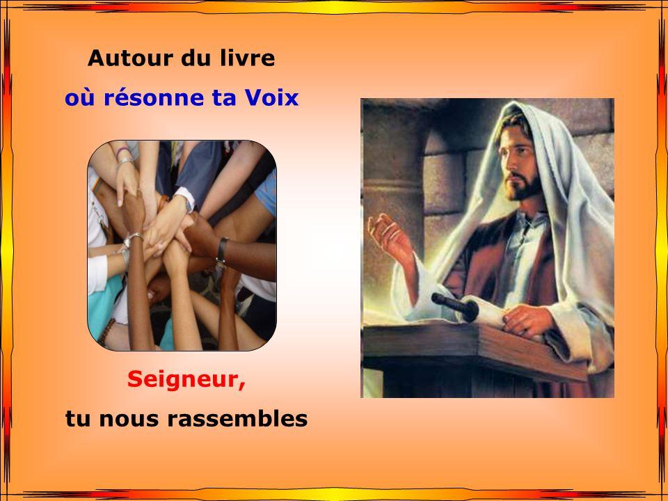 .. Autour du livre où résonne ta Voix Seigneur, tu nous rassembles