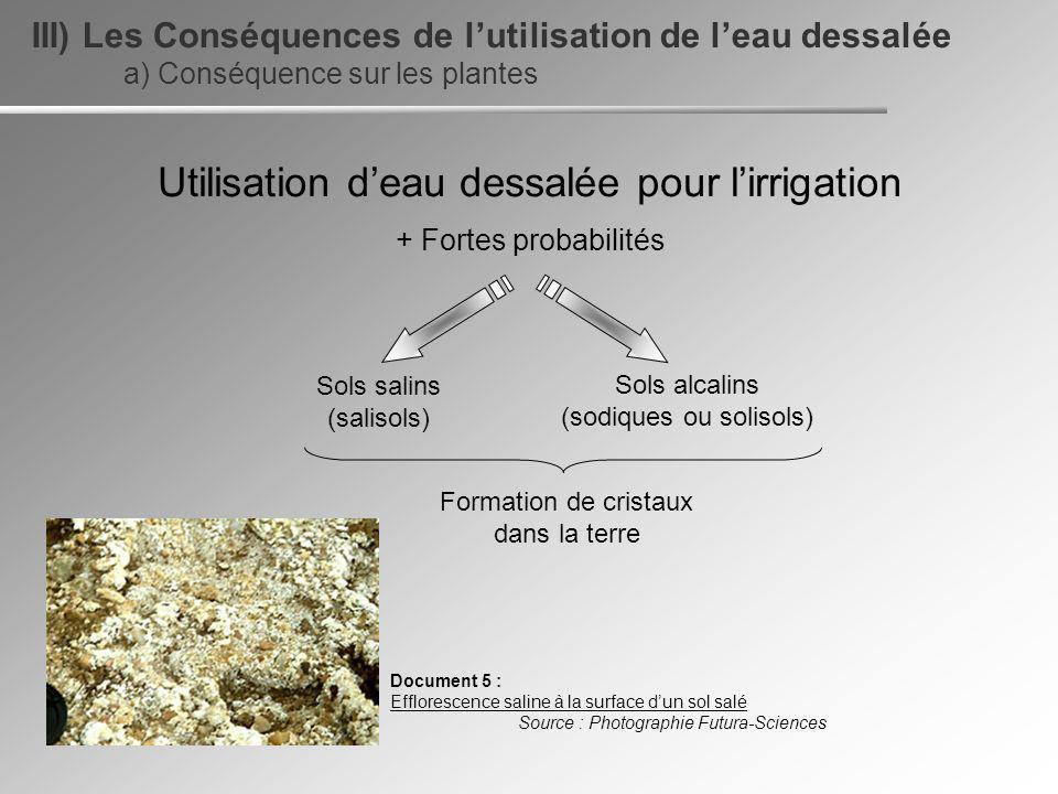 a) Conséquence sur les plantes III) Les Conséquences de lutilisation de leau dessalée Utilisation deau dessalée pour lirrigation + Fortes probabilités