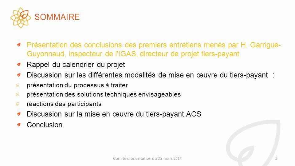 ENTRETIENS TENUS ENTRE LE 25 FÉVRIER ET LE 17 MARS 2014 AMO : CNAM, RSI AMC : FFSA, CTIP, FNMF, UNOCAM Médecins : CSMF, SML,FMF, MG-France Usagers : CISS Pharmaciens : FSPF Unps Dautres RDV sont à venir Comité d orientation du 25 mars 2014 4