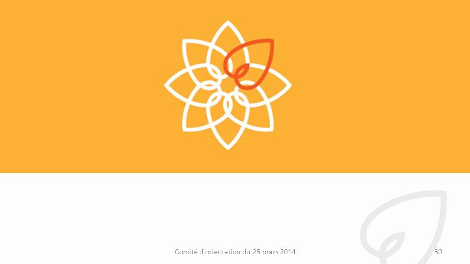 30Comité d orientation du 25 mars 2014
