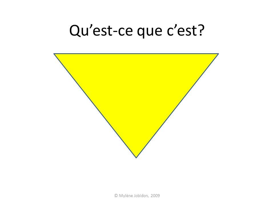 © Mylène Jobidon, 2009 Quest-ce que cest?