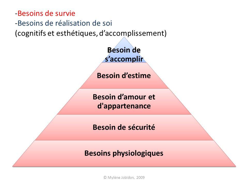 © Mylène Jobidon, 2009 -Besoins de survie -Besoins de réalisation de soi (cognitifs et esthétiques, daccomplissement) Besoin de saccomplir Besoin dest
