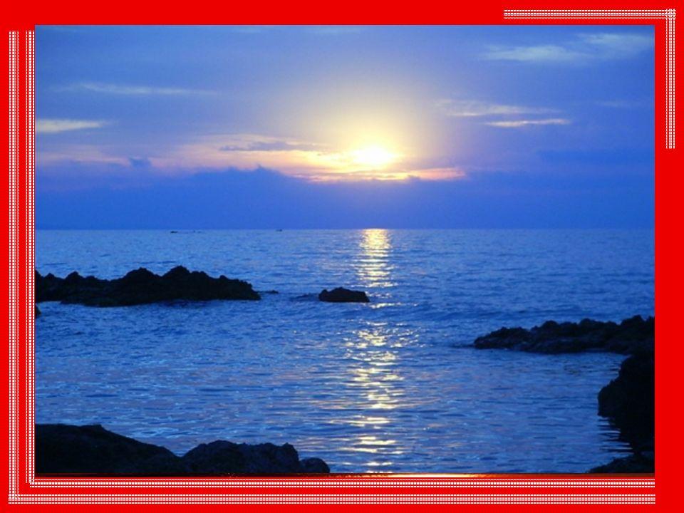 Ce qui frappe ensuite chez notre ami le soleil, c est sa surprenante gratuité gratuité et sa belle générosité.