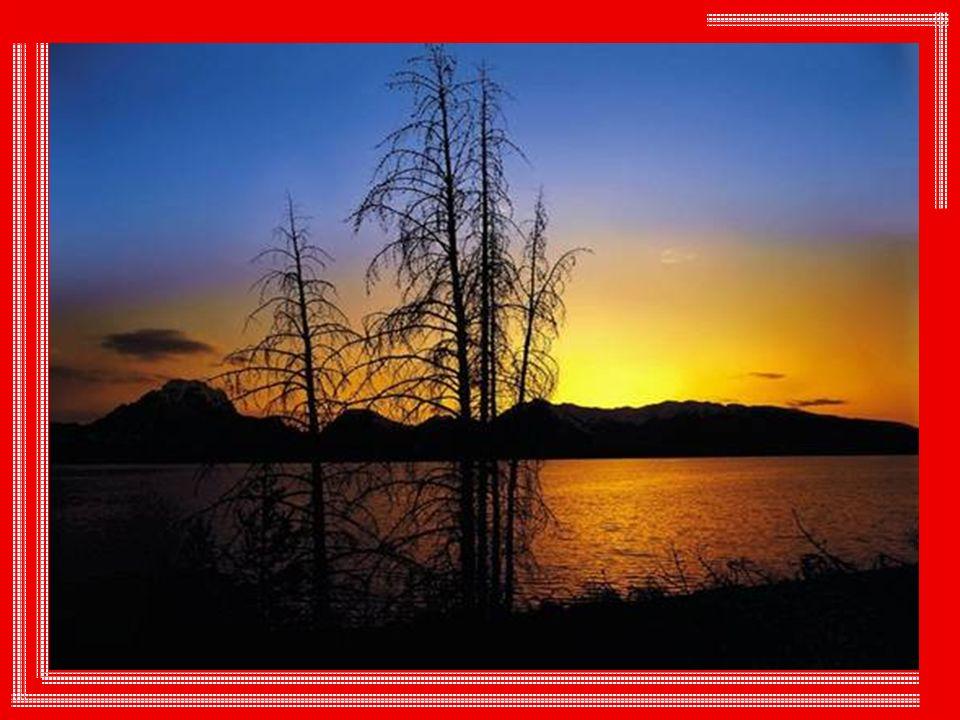 Le soleil n est pas mesquin.Il s offre à nous sans lésiner, sans calculer, sans se faire payer.