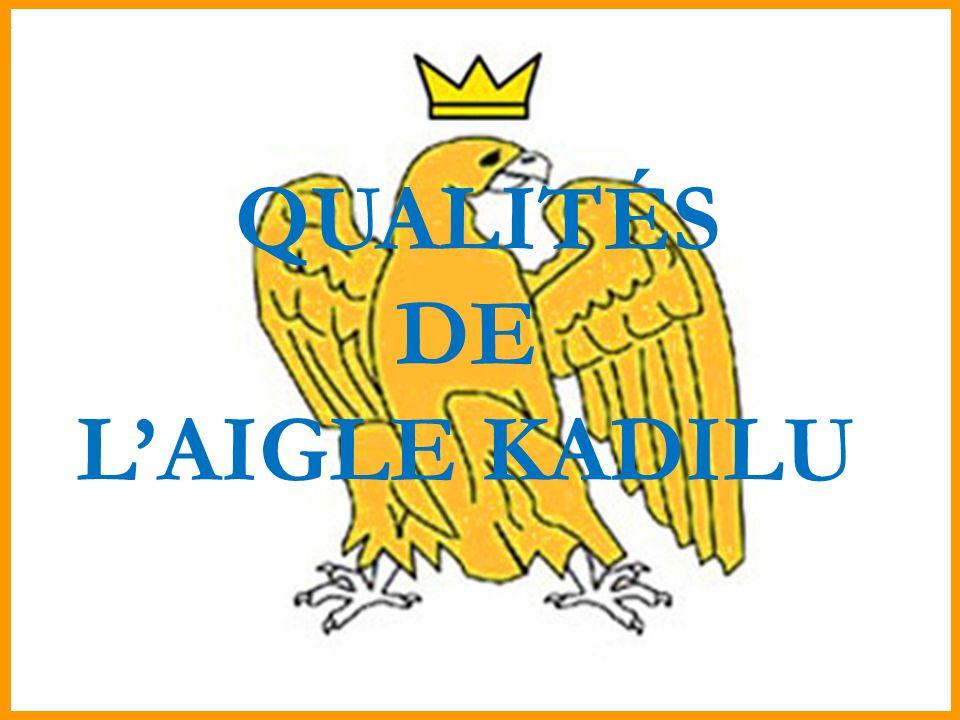 QUALITÉS DE LAIGLE KADILU