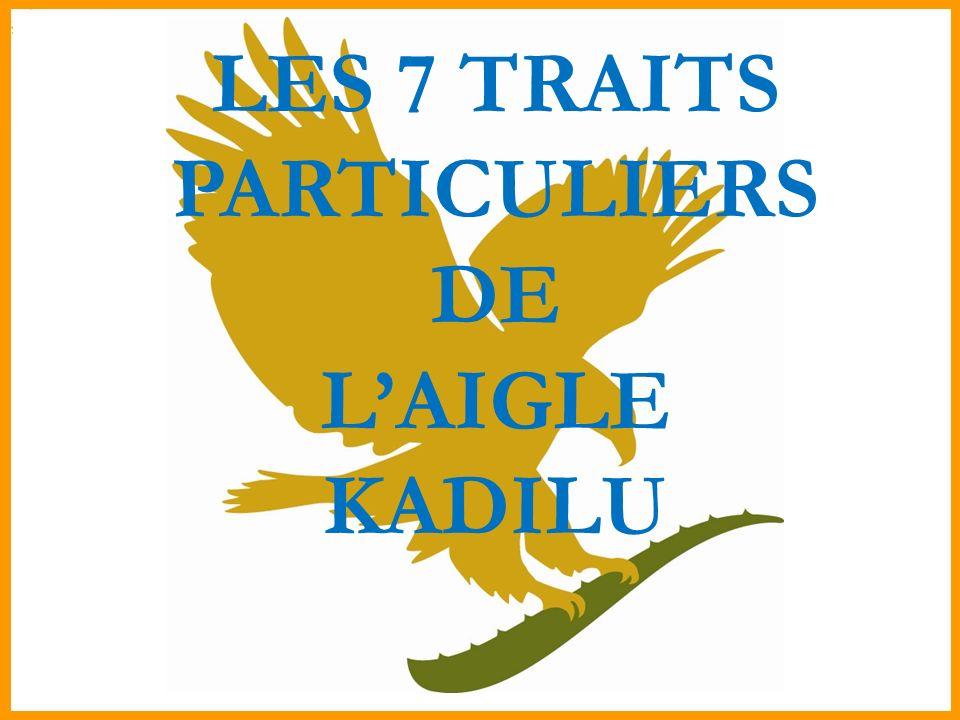 LES 7 TRAITS PARTICULIERS DE LAIGLE KADILU