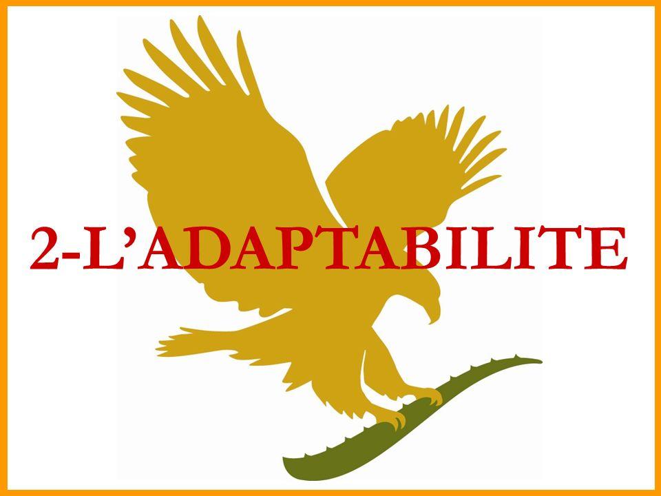 2-LADAPTABILITE