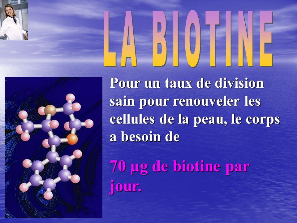 Pour un taux de division sain pour renouveler les cellules de la peau, le corps a besoin de 70 µg de biotine par jour.