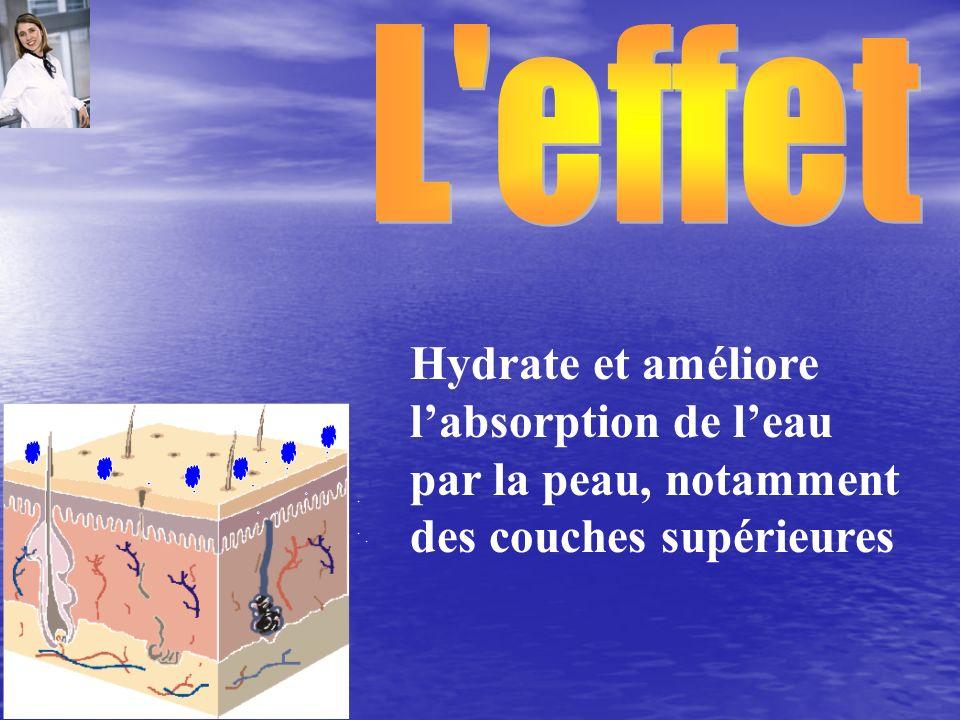 Hydrate et améliore labsorption de leau par la peau, notamment des couches supérieures
