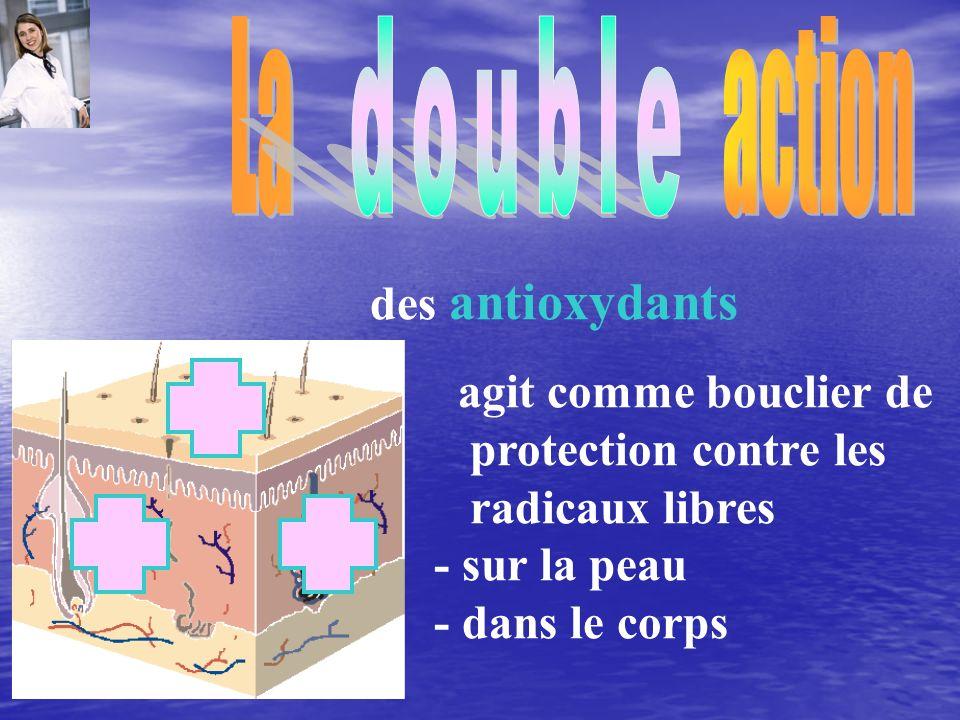 agit comme bouclier de protection contre les radicaux libres - sur la peau - dans le corps des antioxydants