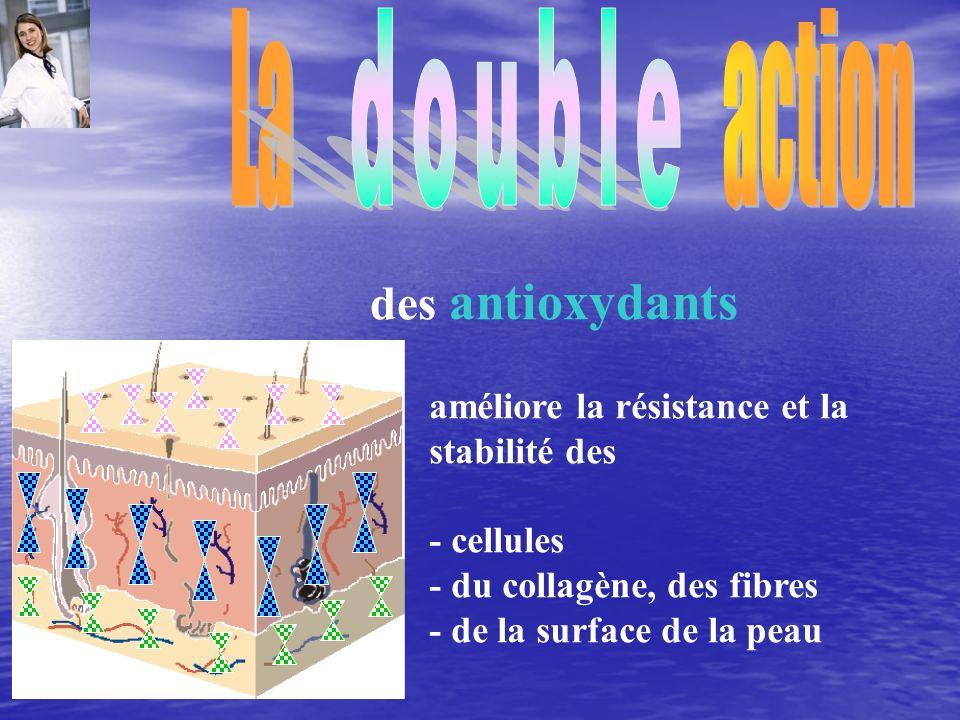 améliore la résistance et la stabilité des - cellules - du collagène, des fibres - de la surface de la peau des antioxydants