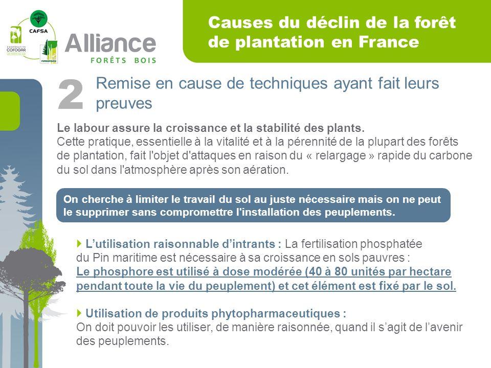 Causes du déclin de la forêt de plantation en France Remise en cause de techniques ayant fait leurs preuves 2 Le labour assure la croissance et la stabilité des plants.