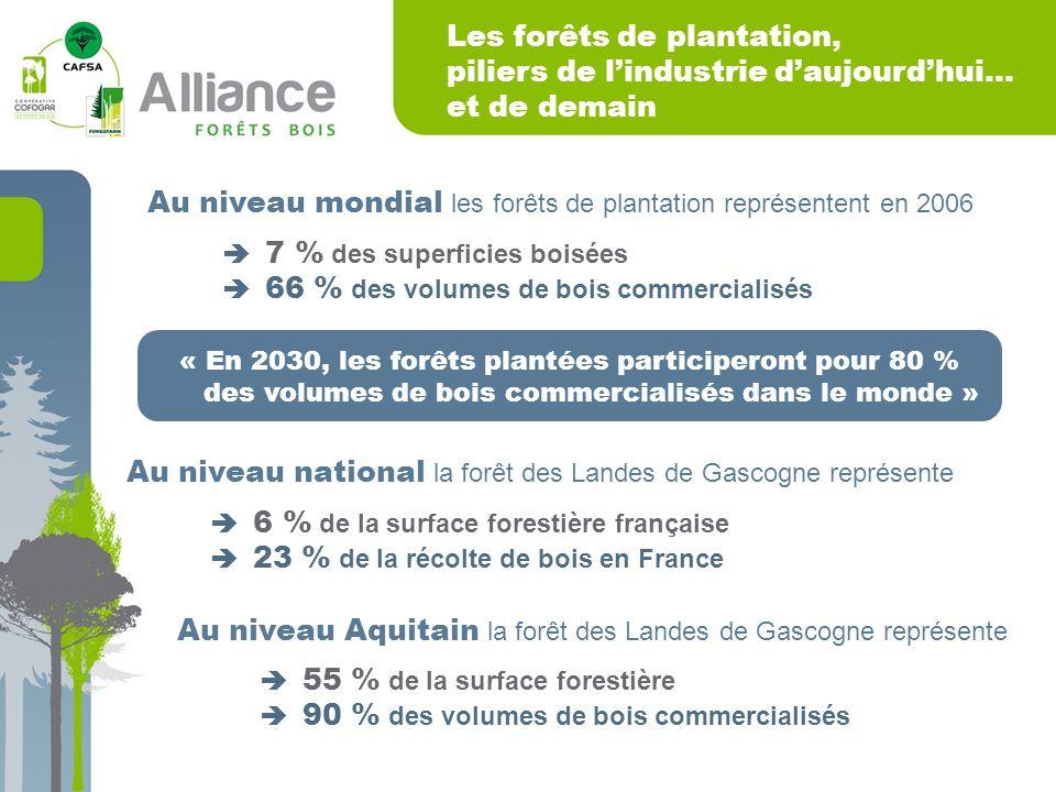 Les forêts de plantation, piliers de lindustrie daujourdhui… et de demain Au niveau mondial les forêts de plantation représentent en 2006 7 % des superficies boisées 66 % des volumes de bois commercialisés Au niveau national la forêt des Landes de Gascogne représente 6 % de la surface forestière française 23 % de la récolte de bois en France Au niveau Aquitain la forêt des Landes de Gascogne représente 55 % de la surface forestière 90 % des volumes de bois commercialisés « En 2030, les forêts plantées participeront pour 80 % des volumes de bois commercialisés dans le monde »