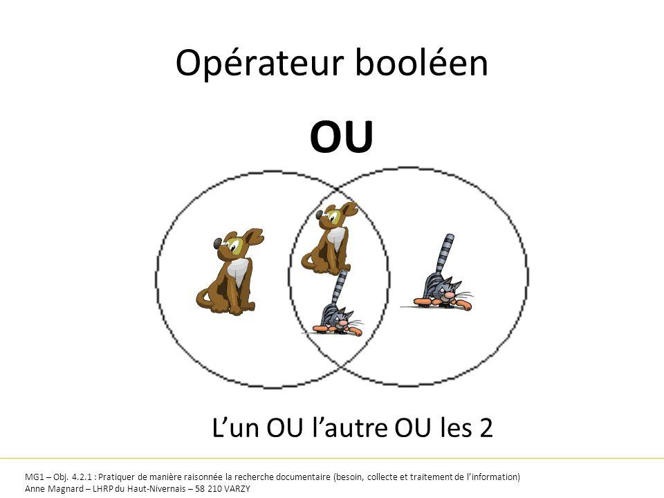 Opérateur booléen OU MG1 – Obj. 4.2.1 : Pratiquer de manière raisonnée la recherche documentaire (besoin, collecte et traitement de linformation) Anne