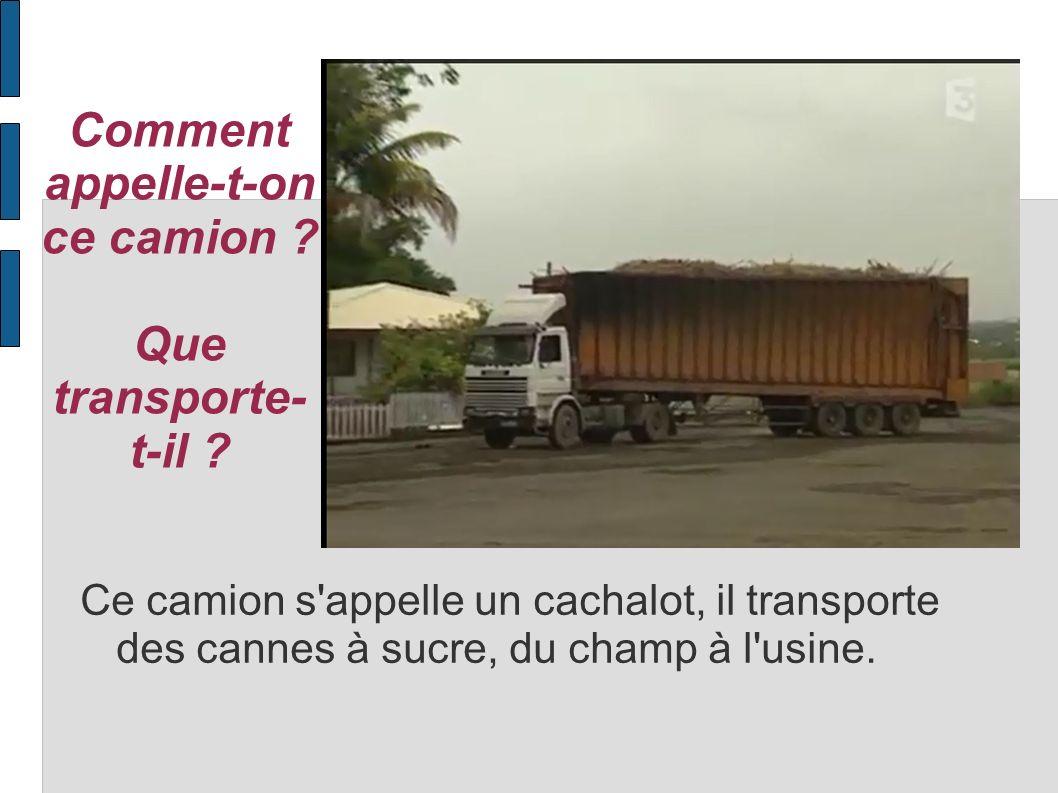 Comment appelle-t-on ce camion ? Que transporte- t-il ? Ce camion s'appelle un cachalot, il transporte des cannes à sucre, du champ à l'usine.
