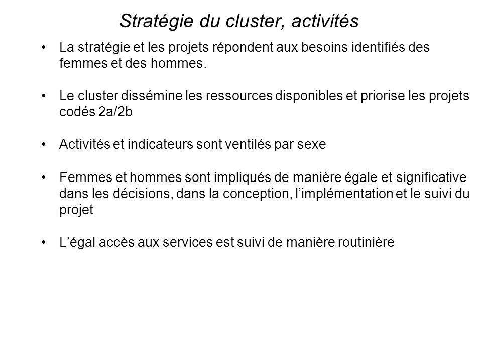 Stratégie du cluster, activités La stratégie et les projets répondent aux besoins identifiés des femmes et des hommes. Le cluster dissémine les ressou