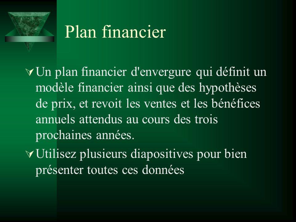 Plan financier Un plan financier d envergure qui définit un modèle financier ainsi que des hypothèses de prix, et revoit les ventes et les bénéfices annuels attendus au cours des trois prochaines années.