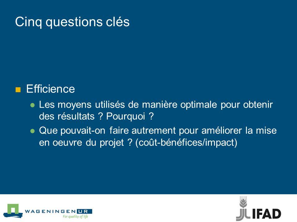 Cinq questions clés Efficience Les moyens utilisés de manière optimale pour obtenir des résultats ? Pourquoi ? Que pouvait-on faire autrement pour amé