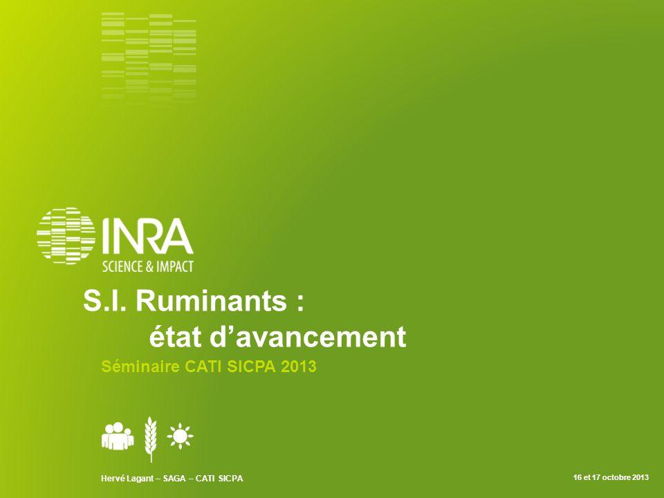 S.I. Ruminants : état davancement Séminaire CATI SICPA 2013 Hervé Lagant – SAGA – CATI SICPA 16 et 17 octobre 2013